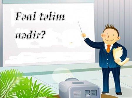 Fəal təlimin üsulları - Təqdimat, kublaşdırma,Ziqzaq,beyin həmləsi.....