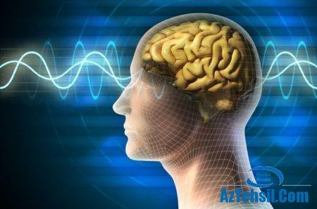 Beyin Gücünü Artıran 10 Taktika