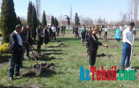 """""""Məktəb bağları"""" layihəsi Zaqatalada davam etdirilib"""