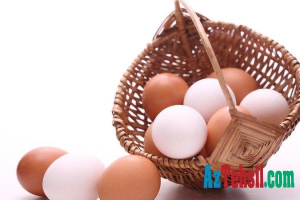 Bu yumurta xərçəngin QARŞISINI ALIR- DİQQƏT