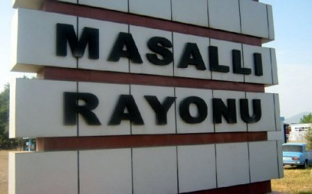 Masallı RTŞ-nin yarıtmaz fəaliyyəti- Tariyel Əkbərov...