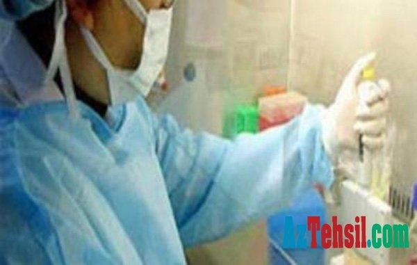 Ukraynada virus səbəbindən məktəblər bağlandı