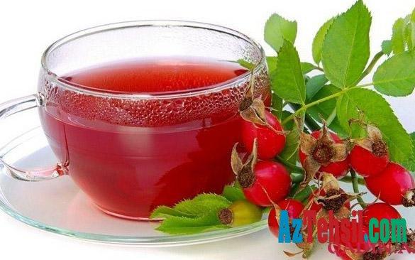 İtburnu çayı çox faydalı müalicəvi içkidir