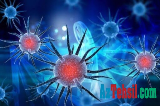 Koronavirusa ilk yoluxan şəxs kimdir?