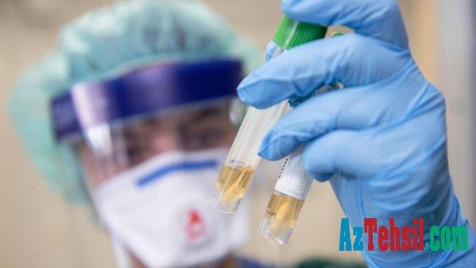 Alimlər koronavirusla mübarizənin TƏBİİ VASİTƏni tapdılar