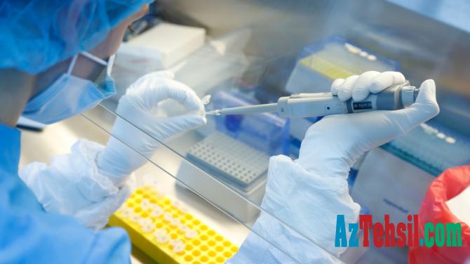 Koronavirusdan ölüm riskini 40 faiz artıran SƏBƏB
