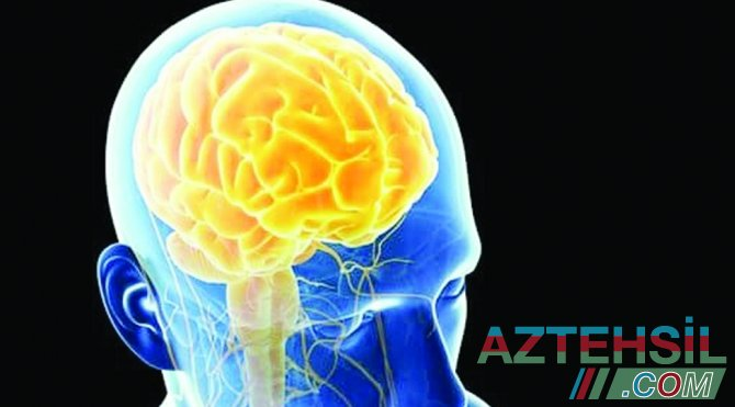 COVID-19 insan beynini yeyir - ŞOK ARAŞDIRMA