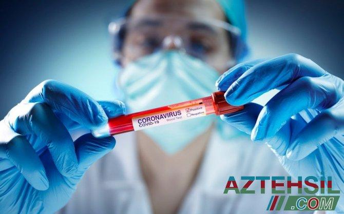 İmmunitet iki yolla yarana bilər - Həkim-infeksionist AÇIQLADI